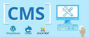 Web Development & CMS