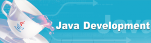 Java J2EE Development